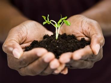 E-DEAL CRM pour une relation client durable